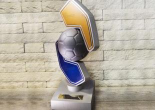 Футбольный кубок для РДМ
